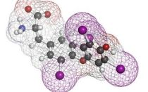 Т4 свободный гормон: анализ, норма, расшифровка