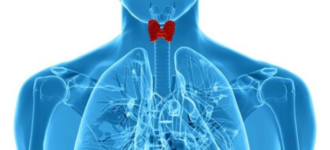 Антитела щитовидной железы