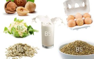 В норме ли у вас витамин В5?