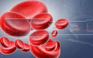 MCV в анализе крови: нормы и возможные причины отклонений