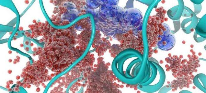 Норма АЛаТ и АСаТ в биохимическом анализе крови
