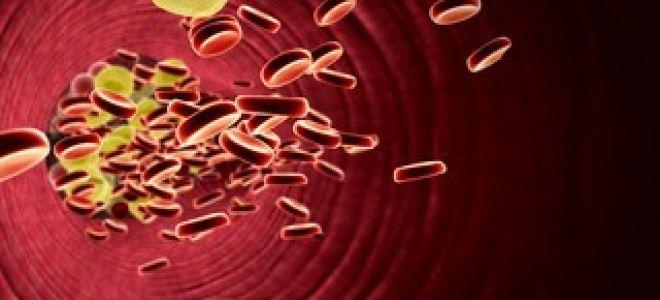 Низкие триглицериды в крови: что это значит?