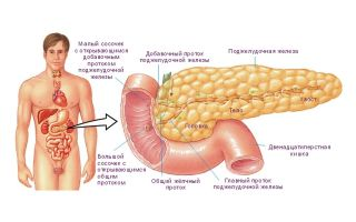 Изменение показателей в анализе крови при панкреатите