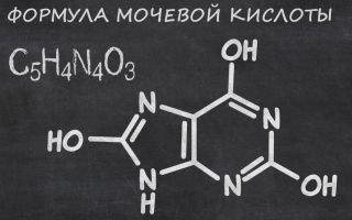 Мочевая кислота: причины повышения, норма в анализе крови