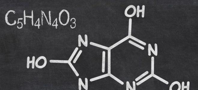Мочевая кислота: нормы в анализе крови и причины повышения