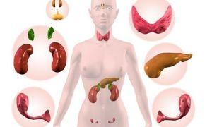 Как правильно сдавать кровь на гормоны?