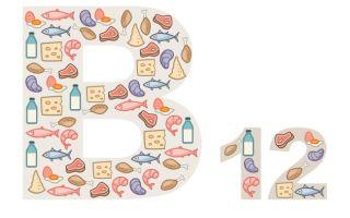 Причины повышения витамина В12 (b12) в крови