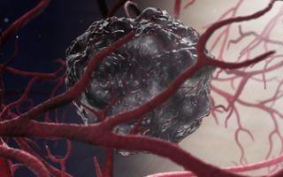 Что показывает онкомаркер НЕ4 (he-4)?