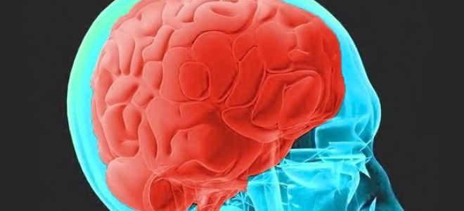 Анализ крови при опухоли головного мозга