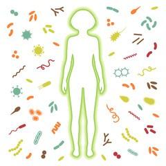 Сегментоядерные нейтрофилы в анализе крови у детей