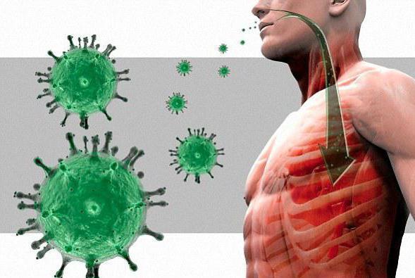 Абсолютное содержание моноцитов в крови повышено: что это значит? причины моноцитоза