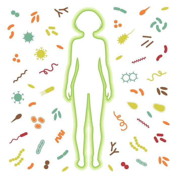 Анализ крови на иммунитет - иммунограмма, как делается, как сдать, что показывает