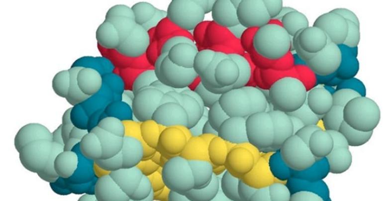 Причины гипопротеинемии - низкого белка в крови